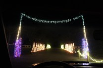Pell City Christmas In The Park 2019 (2)