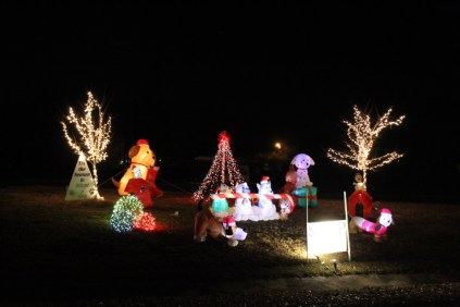 Pell City Christmas In The Park 2019 (23)
