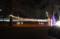 Pell City Christmas In The Park 2019 (30)