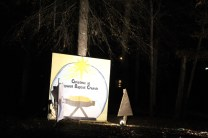 Pell City Christmas In The Park 2019 (35)