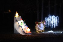 Pell City Christmas In The Park 2019 (37)