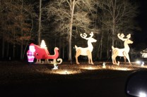 Pell City Christmas In The Park 2019 (46)