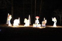 Pell City Christmas In The Park 2019 (49)