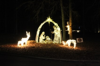 Pell City Christmas In The Park 2019 (9)