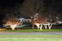 Quintard Avenue Christmas Lights 2019 (5)