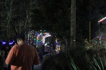 Zoolight Safari 2019 (16)
