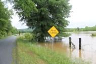 flood 014