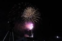 Freedom Festival Fireworks 16 (2)