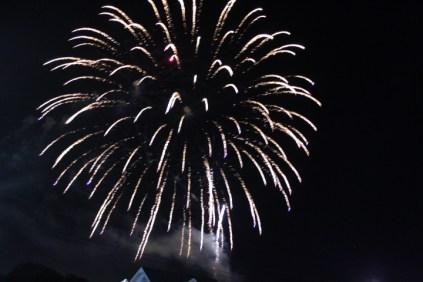 Freedom Festival Fireworks 16 (31)