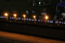 Relay For Life 16 (4)
