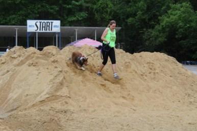US Canine Biathlon (56)