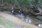 US Canine Biathlon (75)