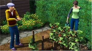 Game Sequels That Underwhelmed The Sims 3