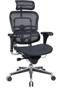Ergohuman High Back Swivel Chair