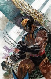 Ardian Syaf Wolverine Collage 2
