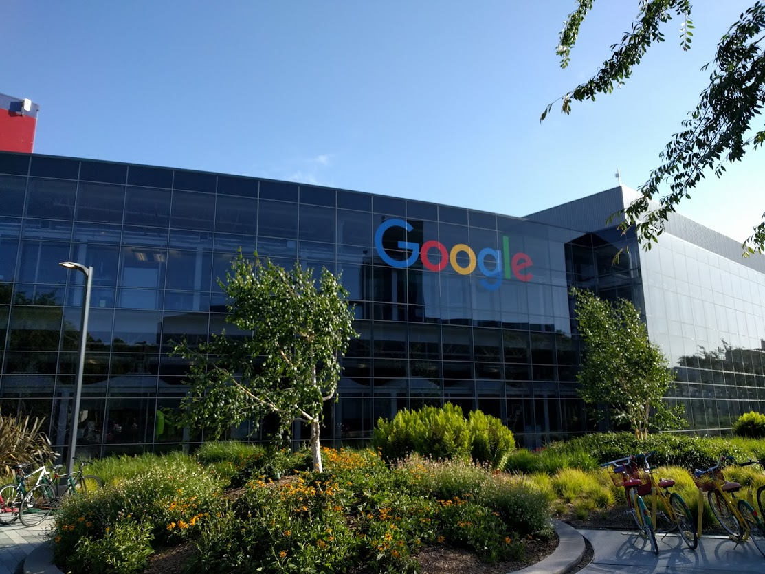 Geek Cat - Googleplex, Google - Dolina Krzemowa