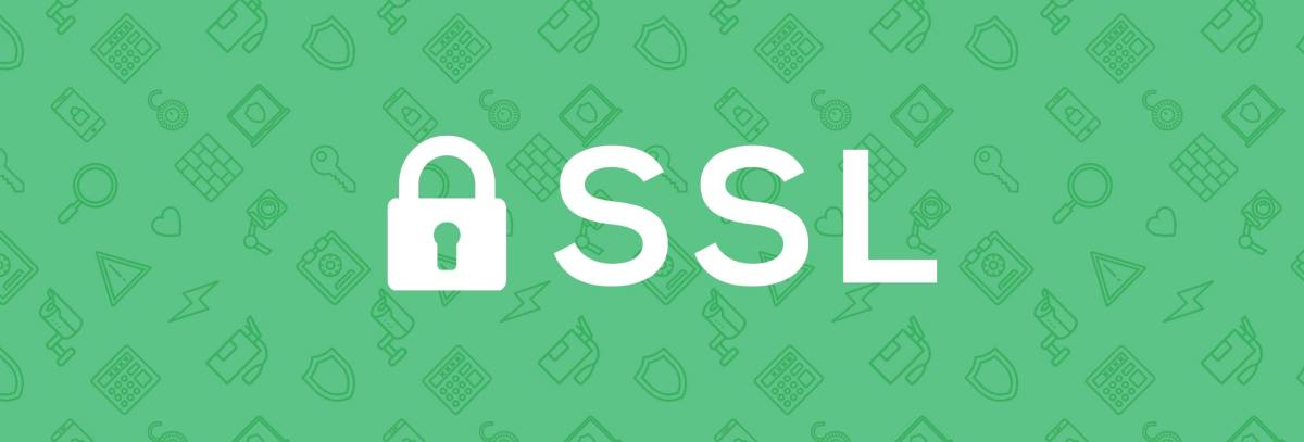 SSL For Search Engines