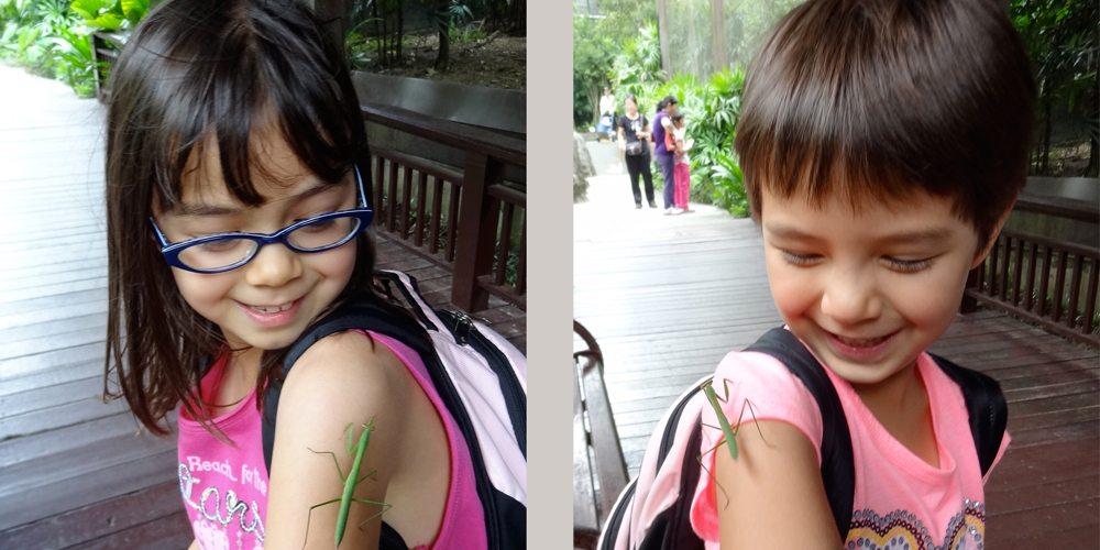 My kids with mantis