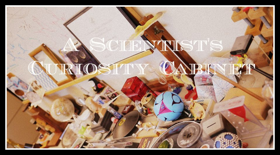 A Scientist's Curiosity Cabinet