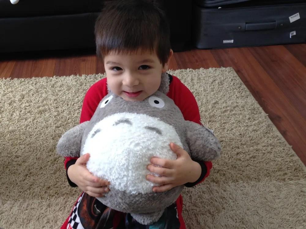 Hugging Totoro
