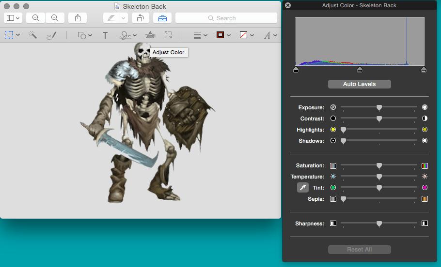 Back of Skeleton
