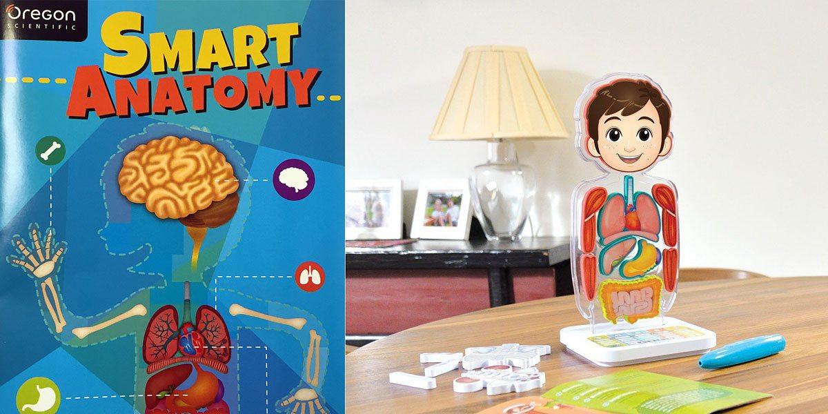 SmartAnatomy-Featured