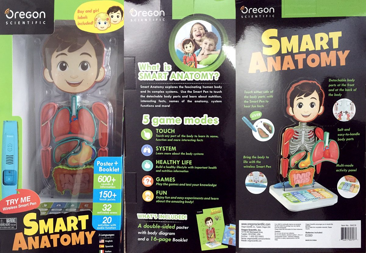 Review Smart Anatomy Interactive Human Body Geekdad
