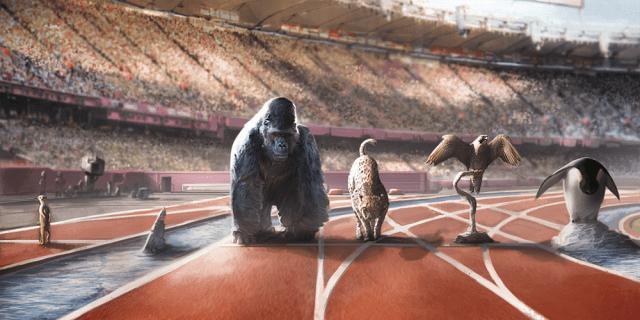 The Animal Games, Image: Big Imagination Games