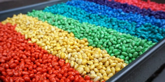 Rainbow dyed beans. Project from 150+ Screen-Free Activities for Kids. Photo by Jackie Reeve.