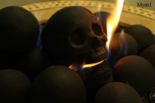 Skull logs