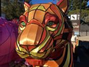 Photo by EG Mum / Art from Vivid Sydney (Taronga Zoo)
