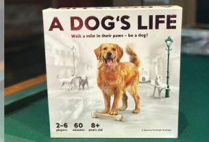 Dog's Life Game