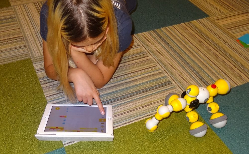 Daughter programming the Mabot