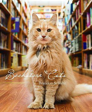 Bookstore Cats, Image: Glitterati Incorporated