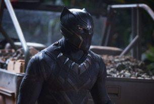 The Black Panther (Chadwick Boseman)