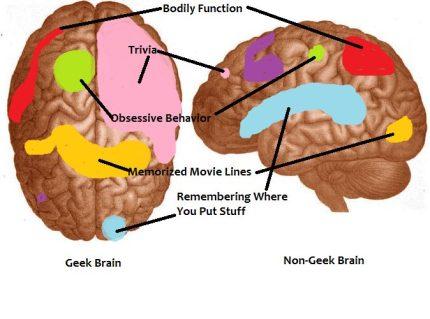 Ten Things My Geek-Brain Makes Me Do