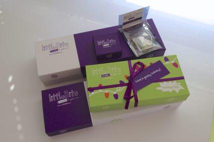 A Little Bit of Electronics Fun with LittleBits