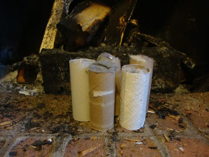 Pinbusted or Pintrusted: Making Fire Starters With Toilet Paper Tubes