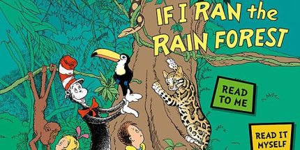 Review: If I Ran the Rainforest Ebook