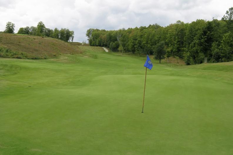 Par 4 12th - Green