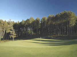 The large green has contours that feed well struck shots close to the common pin positions.