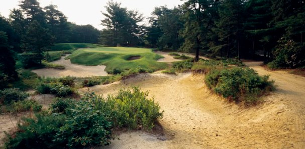 Pine Valley #10