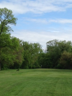 A neat little green tucked into the back corner makes for a challenging tee shot.