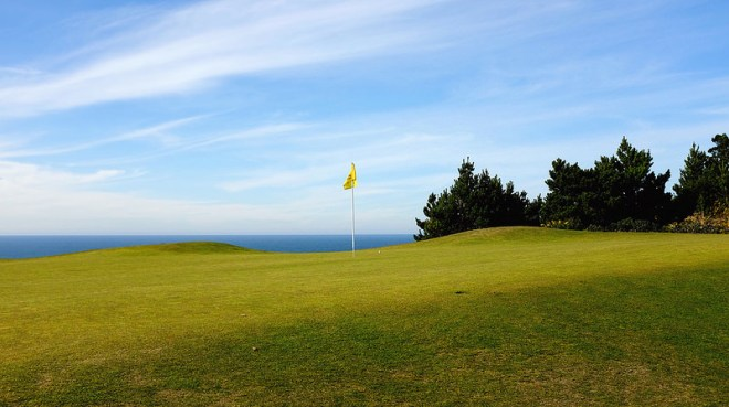 PacificDunes6-Greenside-JC