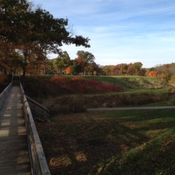 #11 - The par-4 eleventh is where Raynor's use of the ravine levels up from wow, to WOW!