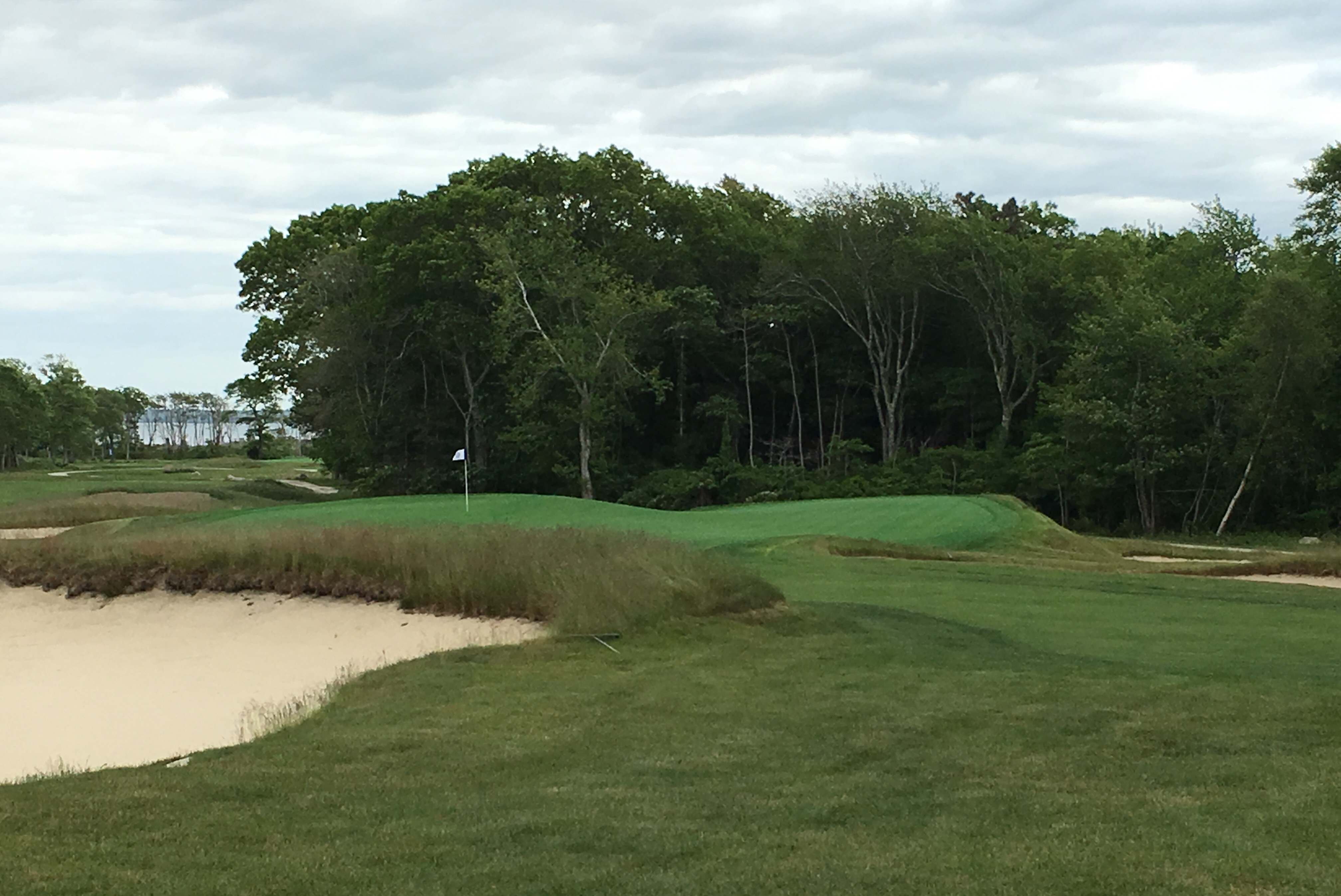 #11 - Par 3 - Approach to the wild green