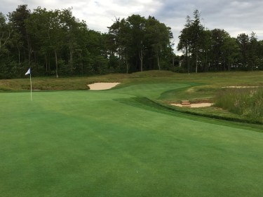 #14 - Par 3- Green contours from back edge