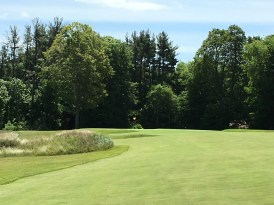 #14 - Par 4 - Approach left to the slick green