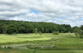 #9 - Par 4 - From the back left tee