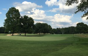 OrchardLakeCC10-Greenback
